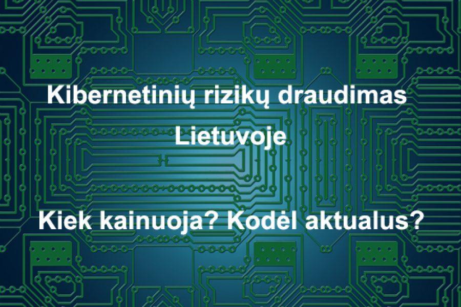 Kibernetinių rizikų draudimas Lietuvoje. Kiek kainuoja? Kodėl aktualus?