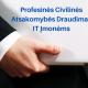 IT Įmonių Profesinės Civilinės Atsakomybės Draudimas. Rizikos ir jų suvaldymas!